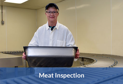 Meat Inspection Image